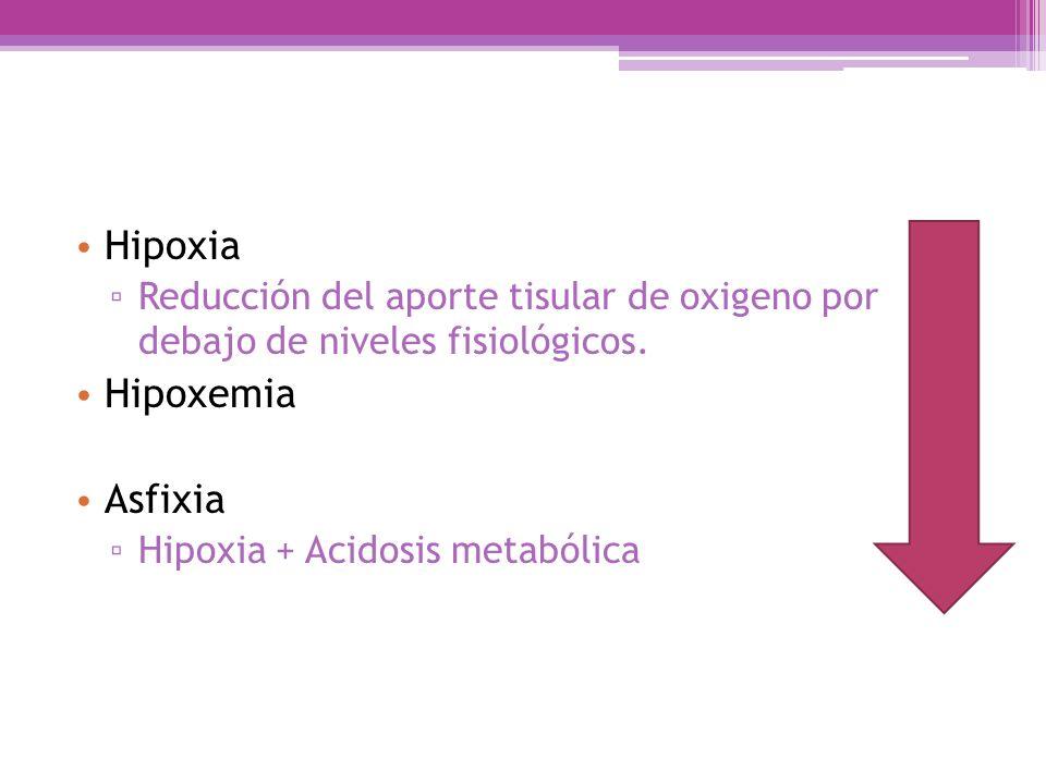 Acidosis Metabólica Acidosis Respiratoria pH Lesión tisular Funcionamiento enzimatico Lesión orgánica Irreversible
