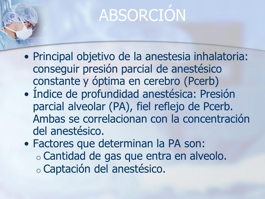 ABSORCIÓN Principal objetivo de la anestesia inhalatoria: conseguir presión parcial de anestésico constante y óptima en cerebro (Pcerb) Índice de prof