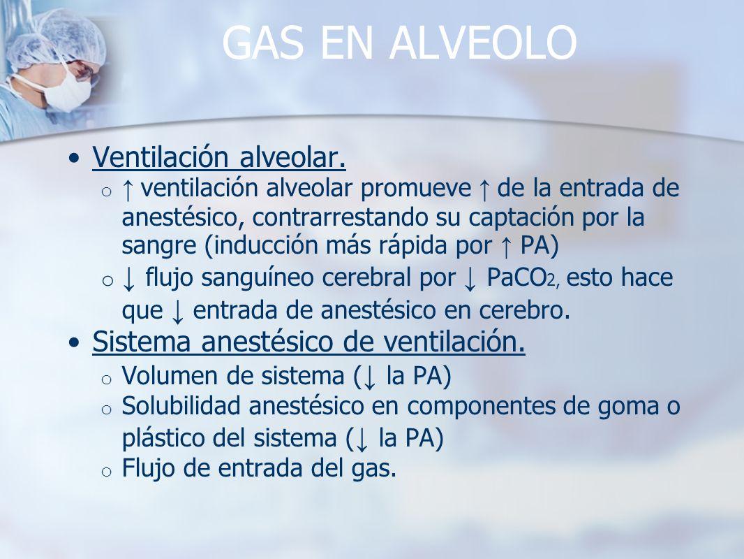 GAS EN ALVEOLO Ventilación alveolar. o ventilación alveolar promueve de la entrada de anestésico, contrarrestando su captación por la sangre (inducció