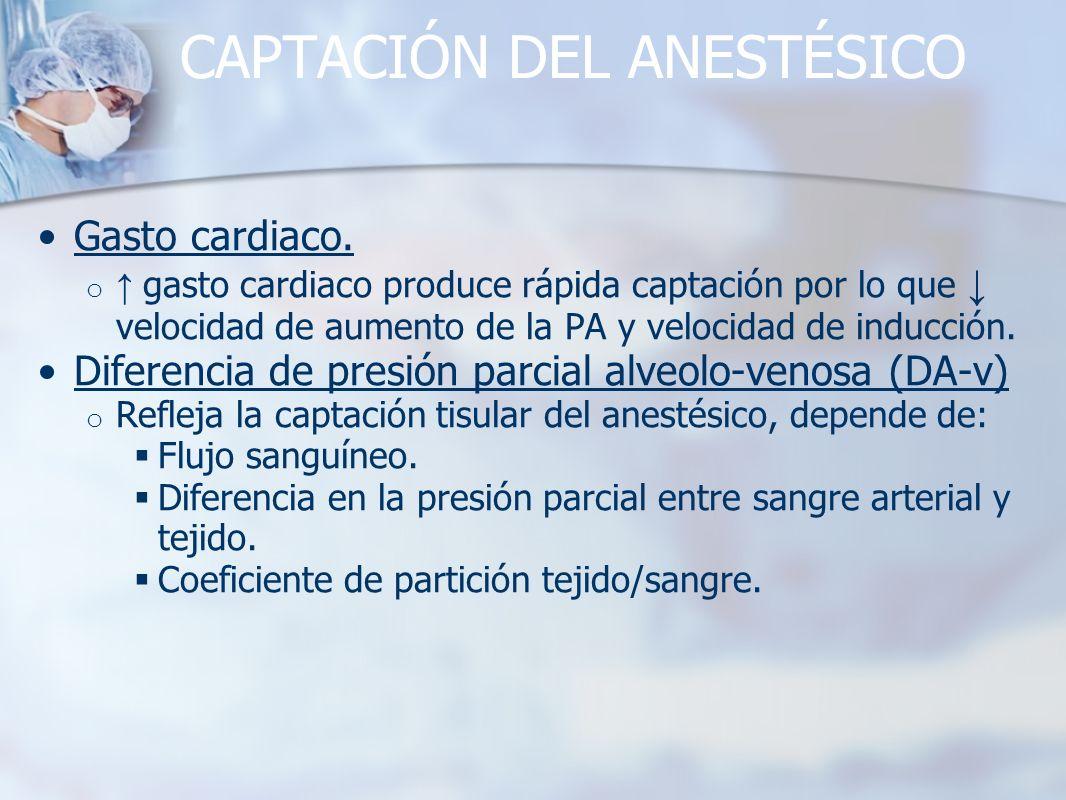 CAPTACIÓN DEL ANESTÉSICO Gasto cardiaco. o gasto cardiaco produce rápida captación por lo que velocidad de aumento de la PA y velocidad de inducción.