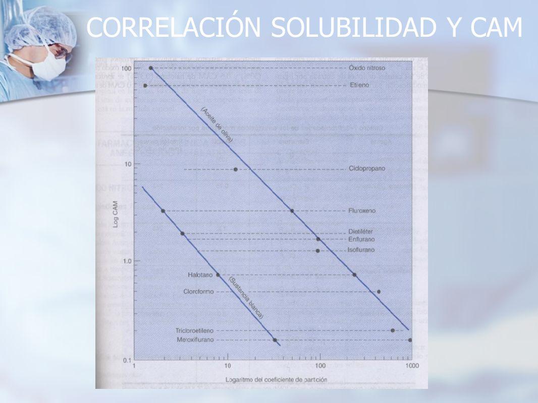 CORRELACIÓN SOLUBILIDAD Y CAM