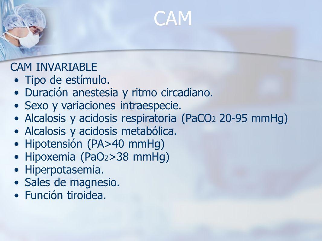 CAM CAM INVARIABLE Tipo de estímulo. Duración anestesia y ritmo circadiano. Sexo y variaciones intraespecie. Alcalosis y acidosis respiratoria (PaCO 2