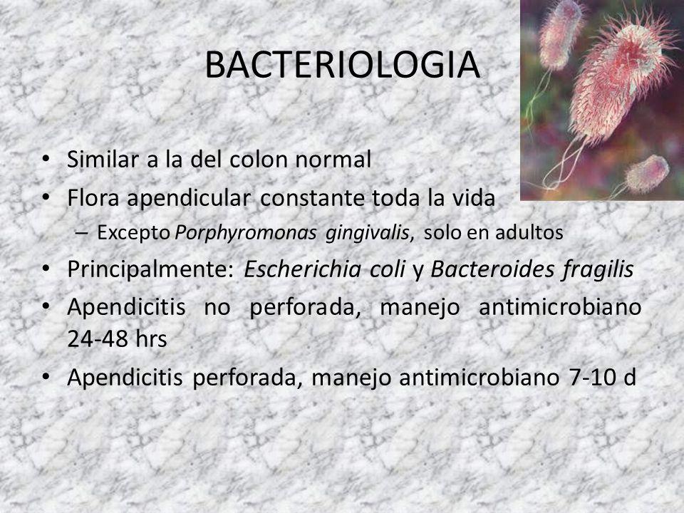 BACTERIOLOGIA Similar a la del colon normal Flora apendicular constante toda la vida – Excepto Porphyromonas gingivalis, solo en adultos Principalment