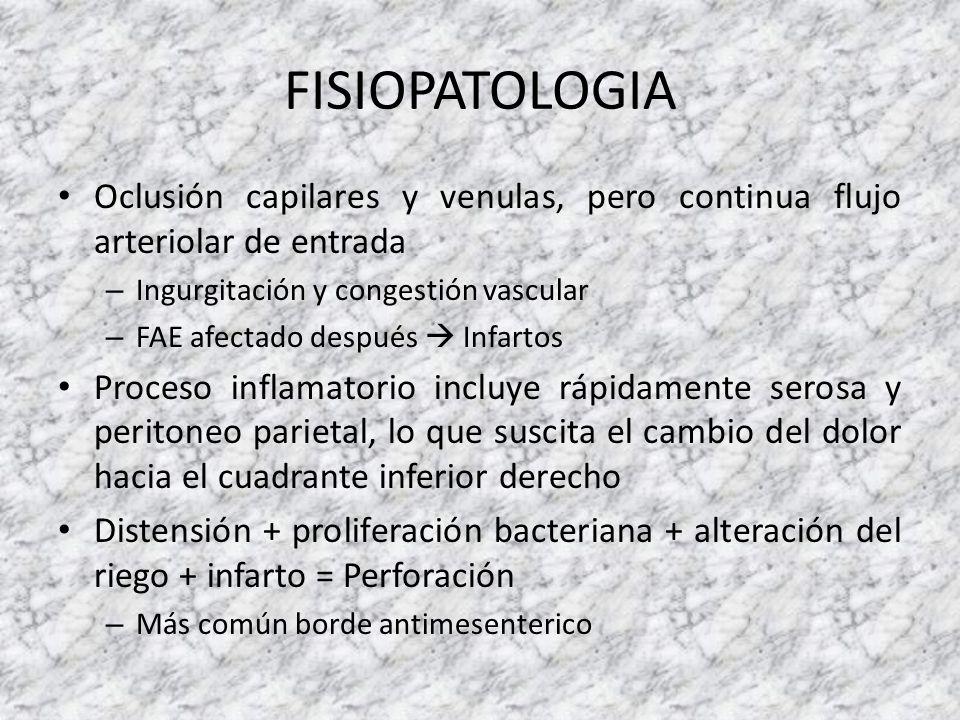 PATOLOGIA Apendicitis aguda edematosa (catarral) – Edema de la mucosa Apendicitis aguda flegmonosa – Abscesos de la pared, lesiones isquémicas de la mucosa Apendicitis aguda necrótica (gangrenosa) – Trombosis de los vasos del mesoapéndice, hemorragia y presencia de ulceración y necrosis de la mucosa
