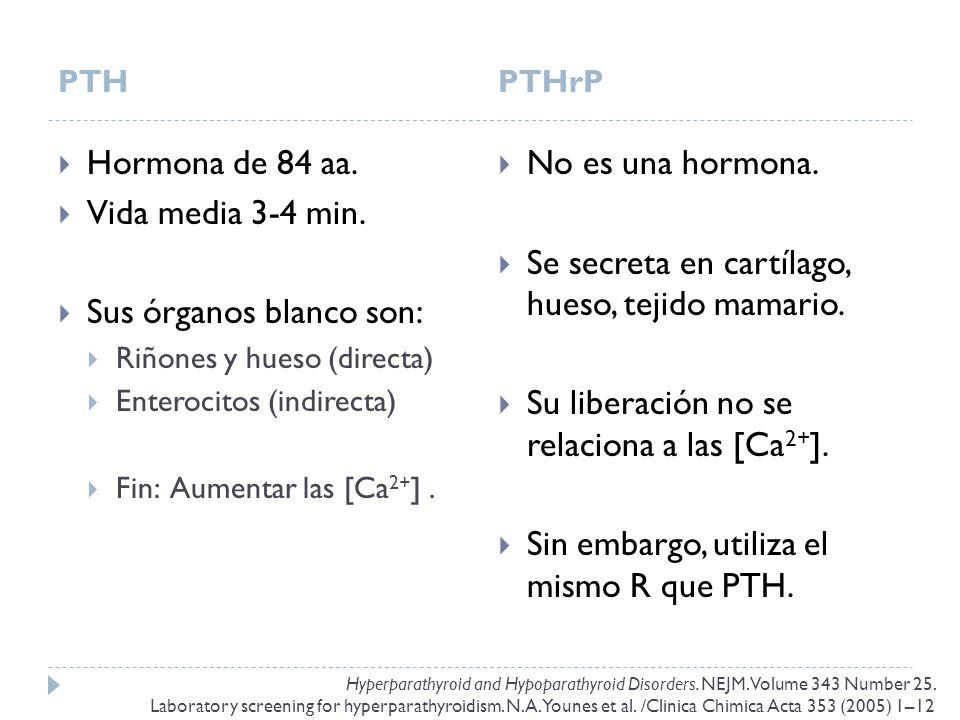 PTHPTHrP Hormona de 84 aa. Vida media 3-4 min. Sus órganos blanco son: Riñones y hueso (directa) Enterocitos (indirecta) Fin: Aumentar las [Ca 2+ ]. N