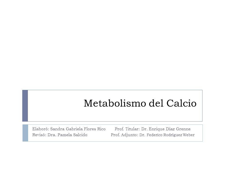 Metabolismo del Calcio Elaboró: Sandra Gabriela Flores Rico Prof. Titular: Dr. Enrique Díaz Grenne Revisó: Dra. Pamela Salcido Prof. Adjunto: Dr. Fede
