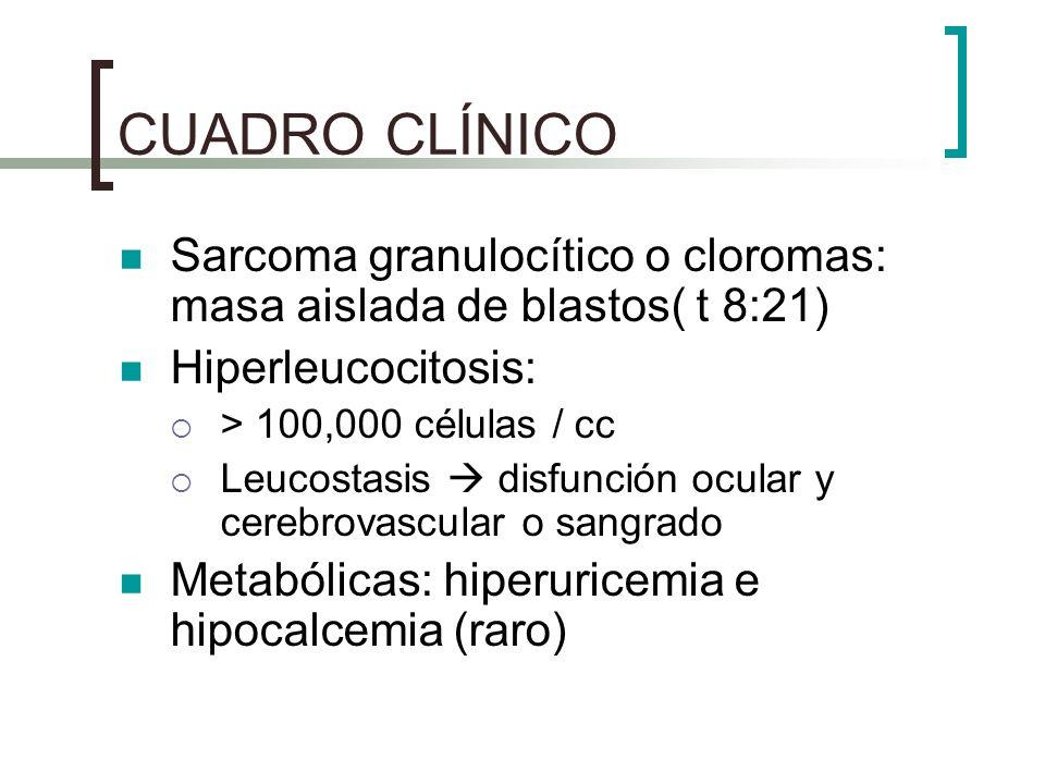 CUADRO CLÍNICO Sarcoma granulocítico o cloromas: masa aislada de blastos( t 8:21) Hiperleucocitosis: > 100,000 células / cc Leucostasis disfunción ocu