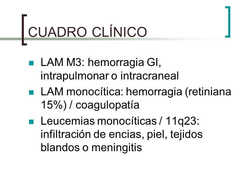 CUADRO CLÍNICO LAM M3: hemorragia GI, intrapulmonar o intracraneal LAM monocítica: hemorragia (retiniana 15%) / coagulopatía Leucemias monocíticas / 1