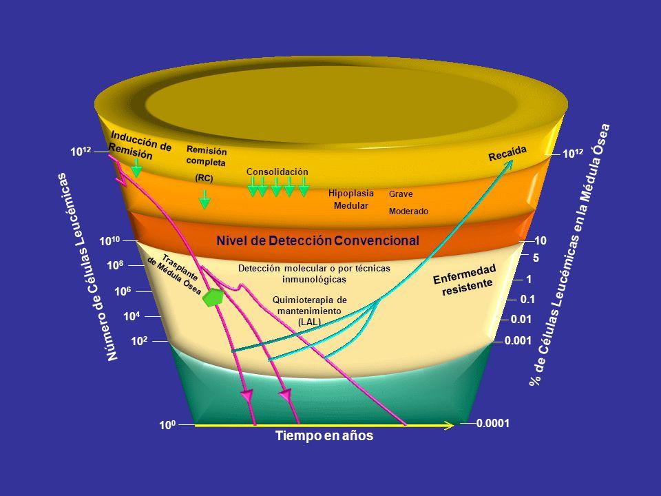 Tiempo en años Número de Células Leucémicas 10 10 12 10 8 10 6 10 4 10 2 10 0 0.0001 10 % de Células Leucémicas en la Médula Ósea 10 12 5 1 0.1 0.01 0