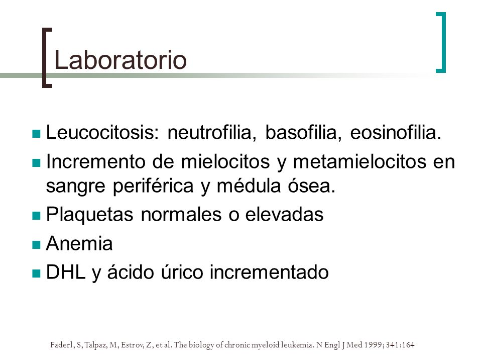 Laboratorio Faderl, S, Talpaz, M, Estrov, Z, et al. The biology of chronic myeloid leukemia. N Engl J Med 1999; 341:164 Leucocitosis: neutrofilia, bas
