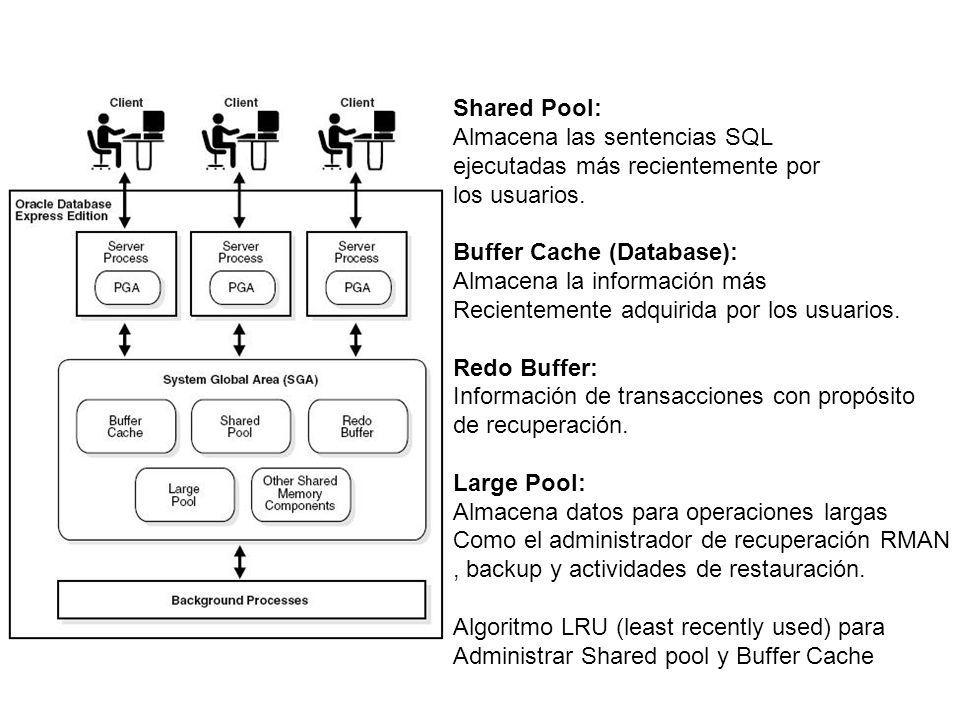 Ciertas cuentas de usuario son creadas automáticamente para la administración de la base de datos.
