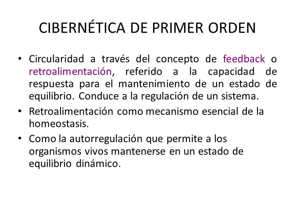 CIBERNETICA DE PRIMER ORDEN Concepto de información: Esencial para la organización del sistema La retroalimentación no sólo involucra energía y materia sino que también hay allí un proceso informacional y organizacional.