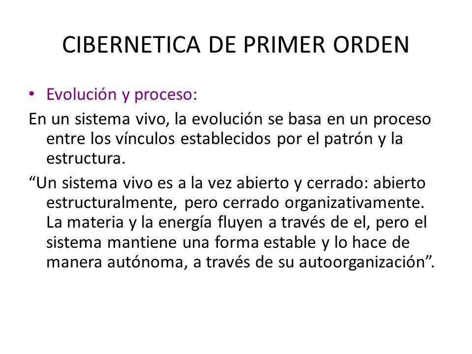 CIBERNETICA DE PRIMER ORDEN Evolución y proceso: En un sistema vivo, la evolución se basa en un proceso entre los vínculos establecidos por el patrón