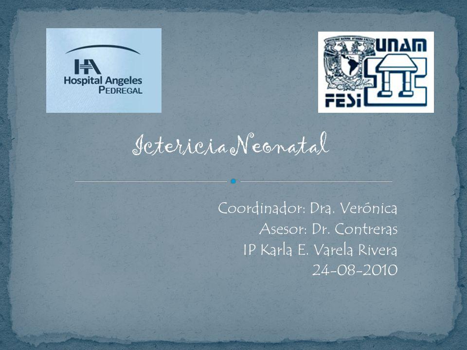 Coordinador: Dra. Verónica Asesor: Dr. Contreras IP Karla E. Varela Rivera 24-08-2010