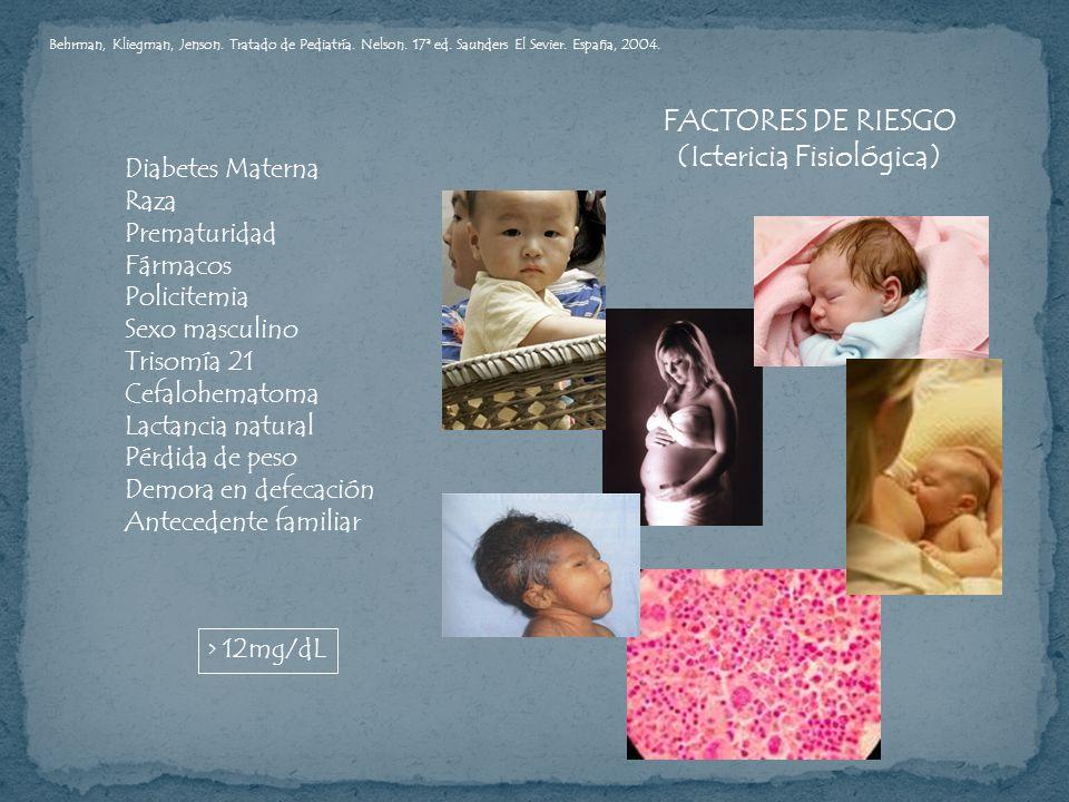FACTORES DE RIESGO (Ictericia Fisiológica) Diabetes Materna Raza Prematuridad Fármacos Policitemia Sexo masculino Trisomía 21 Cefalohematoma Lactancia