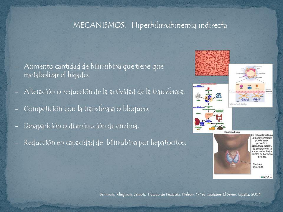 MECANISMOS: Hiperbilirrubinemia indirecta -Aumento cantidad de bilirrubina que tiene que metabolizar el hígado. -Alteración o reducción de la activida