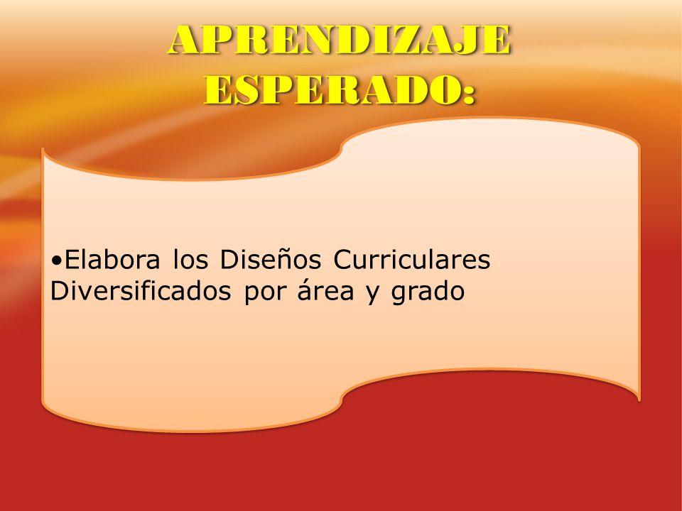 Elabora los Diseños Curriculares Diversificados por área y grado APRENDIZAJE ESPERADO: