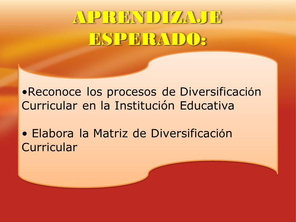 Reconoce los procesos de Diversificaci ó n Curricular en la Institución Educativa Elabora la Matriz de Diversificaci ó n Curricular Reconoce los proce