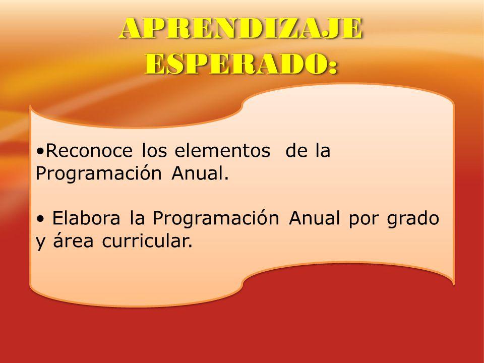 Reconoce los elementos de la Programación Anual. Elabora la Programación Anual por grado y área curricular. Reconoce los elementos de la Programación
