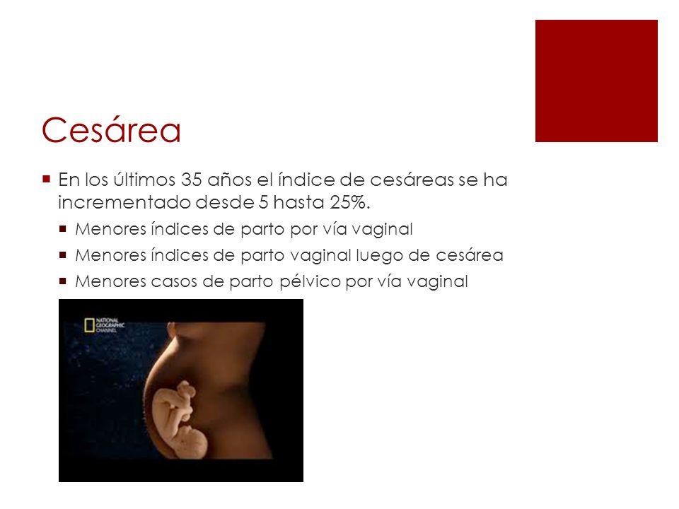 Beck Incisión segmentaria longitudinal Embarazo pretérmino, embarazo múltiple, situación transversa y presentación pélvica.