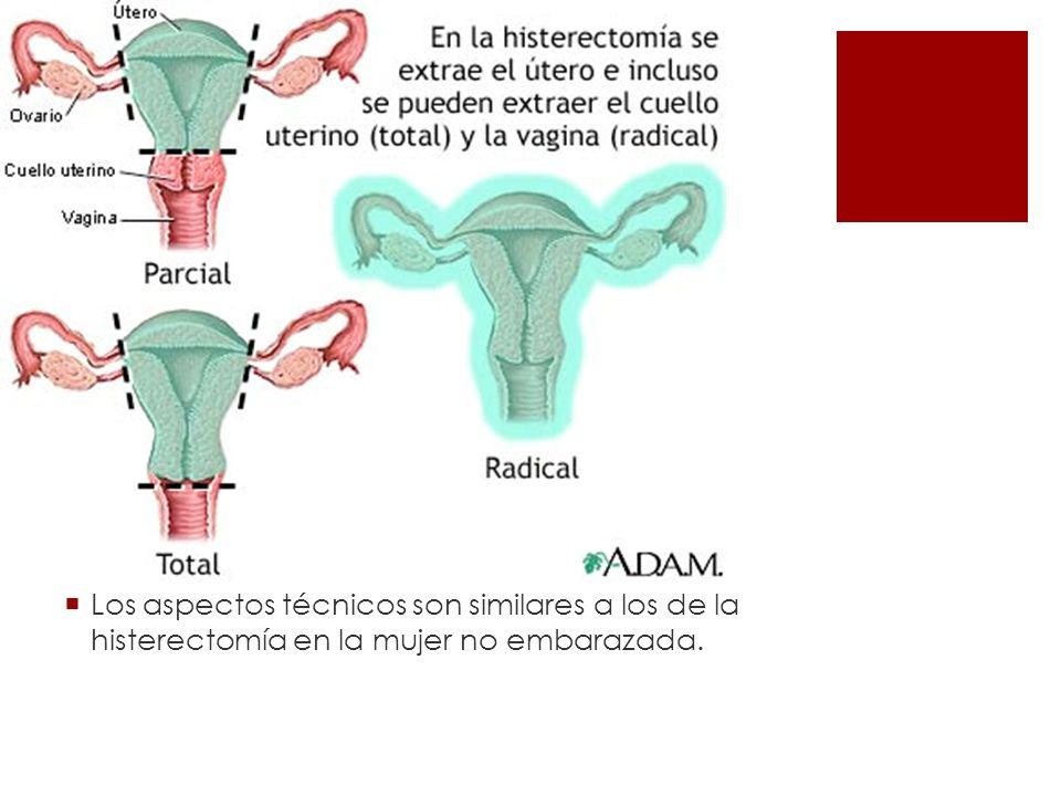 Los aspectos técnicos son similares a los de la histerectomía en la mujer no embarazada.