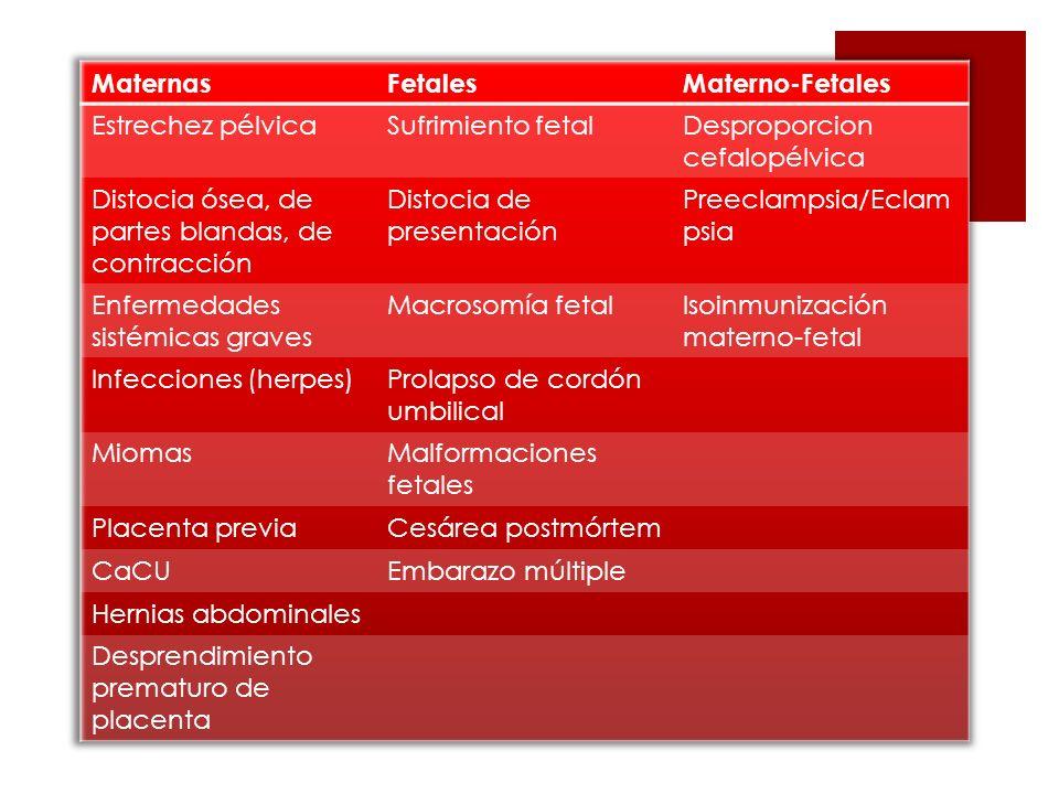 Tiempos quirúgicos Incisión abdominal Incisión uterina Encuentro con placenta Parto Cierre de la incisión uterina