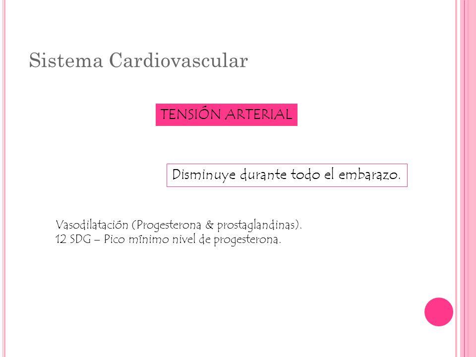 Sistema Cardiovascular TENSIÓN ARTERIAL Disminuye durante todo el embarazo. Vasodilatación (Progesterona & prostaglandinas). 12 SDG – Pico mínimo nive