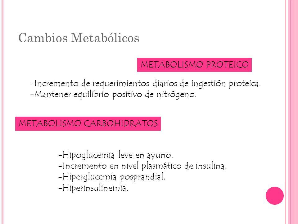 Cambios Metabólicos METABOLISMO PROTEICO -Incremento de requerimientos diarios de ingestión proteica. -Mantener equilibrio positivo de nitrógeno. META