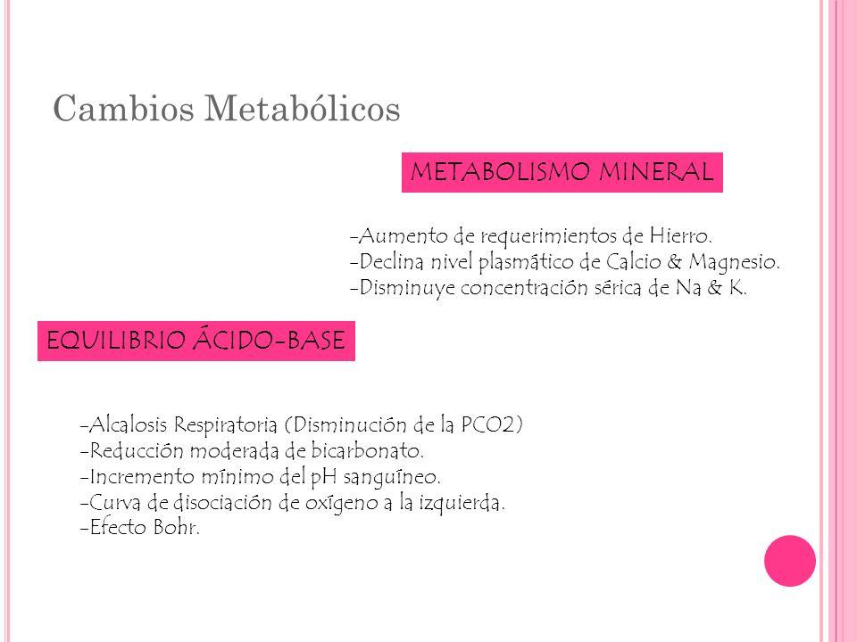 Cambios Metabólicos METABOLISMO MINERAL -Aumento de requerimientos de Hierro. -Declina nivel plasmático de Calcio & Magnesio. -Disminuye concentración