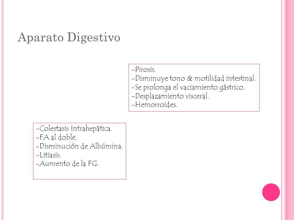 Aparato Digestivo -Pirosis. -Disminuye tono & motilidad intestinal. -Se prolonga el vaciamiento gástrico. -Desplazamiento visceral. -Hemorroides. -Col