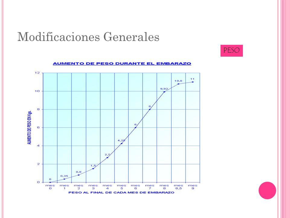 Modificaciones Generales PESO