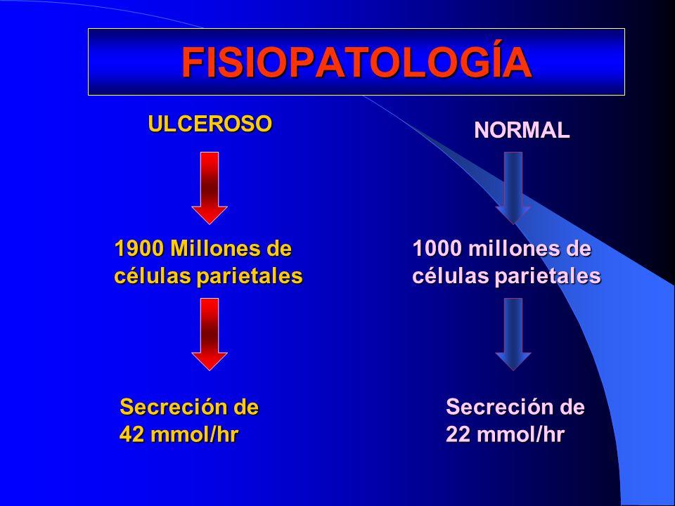 FISIOPATOLOGÍA ULCEROSO ULCEROSO 1900 Millones de células parietales Secreción de 42 mmol/hr NORMAL 1000 millones de células parietales Secreción de 2