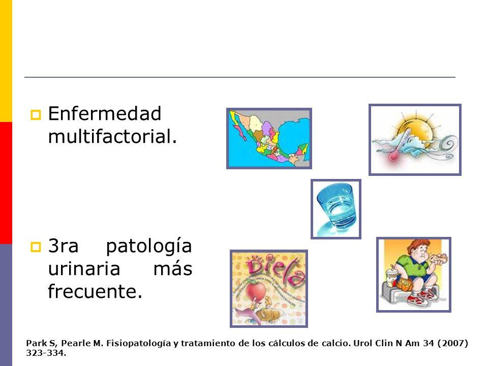 TEORÍAS ANATÓMICAS alteración del flujo normal de la vía urinaria + estancamiento sobresaturación Alteraciones congénitas o adquiridas Gérmenes ureolíticos urea urinaria amoniaco y radicales hidroxilos ureasa intensa alcalinización y modificación de las características fisicoquímicas de la orina potencia la formación de precipitados Proteus Pseudomonas Klebsiellas
