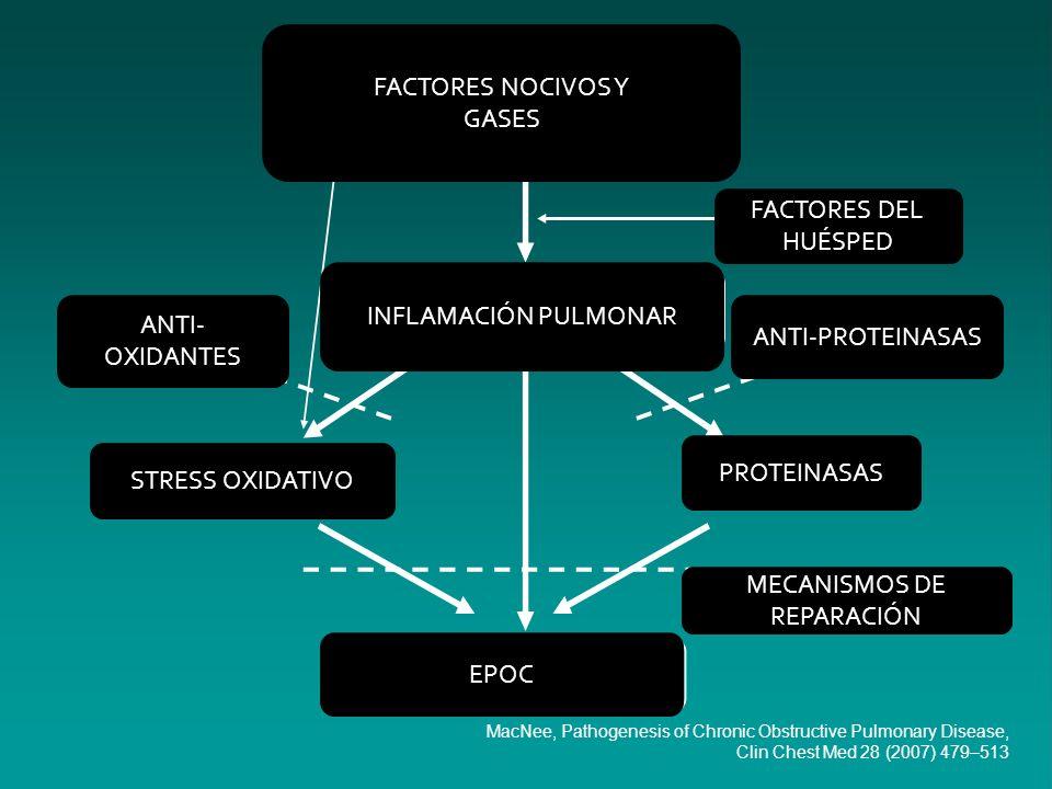 FACTORES DEL HUÉSPED ANTI-PROTEINASAS FACTORES NOCIVOS Y GASES INFLAMACIÓN PULMONAR ANTI- OXIDANTES STRESS OXIDATIVO EPOC MECANISMOS DE REPARACIÓN PRO