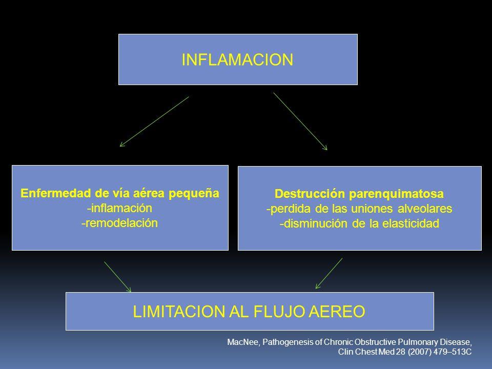 INFLAMACION Enfermedad de vía aérea pequeña -inflamación -remodelación Destrucción parenquimatosa -perdida de las uniones alveolares -disminución de l
