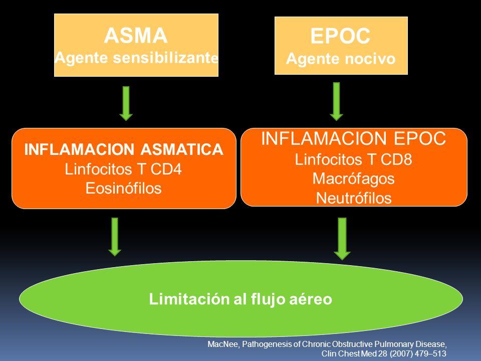 ASMA Agente sensibilizant e EPOC Agente nocivo INFLAMACION ASMATICA Linfocitos T CD4 Eosinófilos INFLAMACION EPOC Linfocitos T CD8 Macrófagos Neutrófi