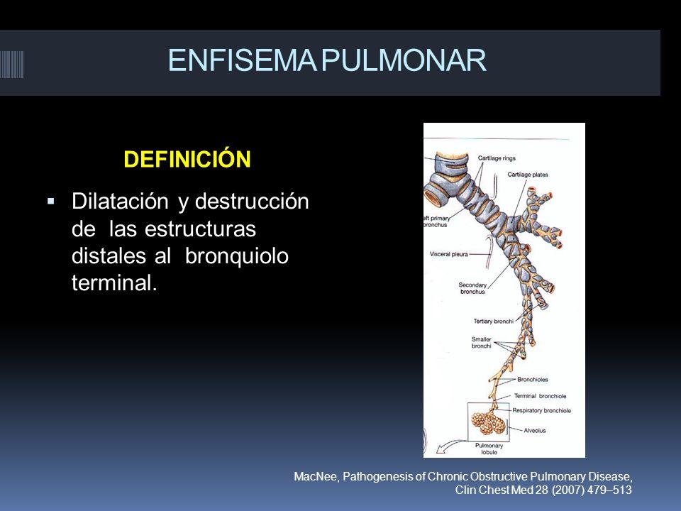ENFISEMA PULMONAR DEFINICIÓN Dilatación y destrucción de las estructuras distales al bronquiolo terminal. MacNee, Pathogenesis of Chronic Obstructive