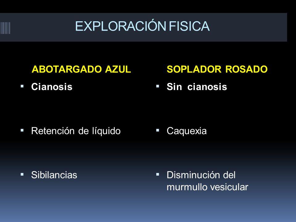 EXPLORACIÓN FISICA ABOTARGADO AZULSOPLADOR ROSADO Cianosis Retención de líquido Sibilancias Sin cianosis Caquexia Disminución del murmullo vesicular