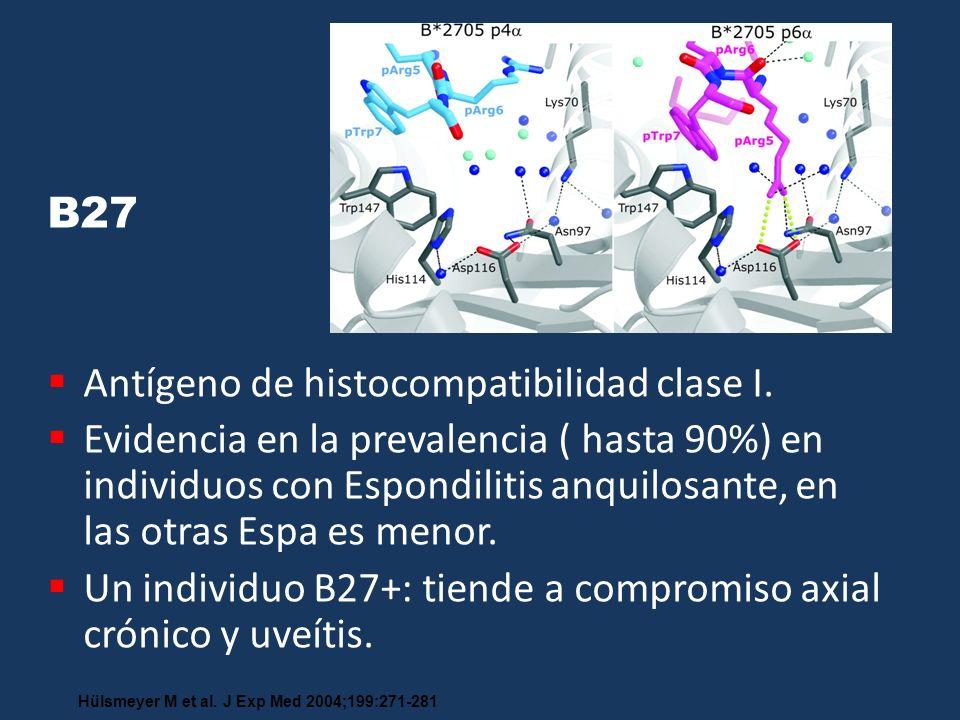 B27 Antígeno de histocompatibilidad clase I. Evidencia en la prevalencia ( hasta 90%) en individuos con Espondilitis anquilosante, en las otras Espa e