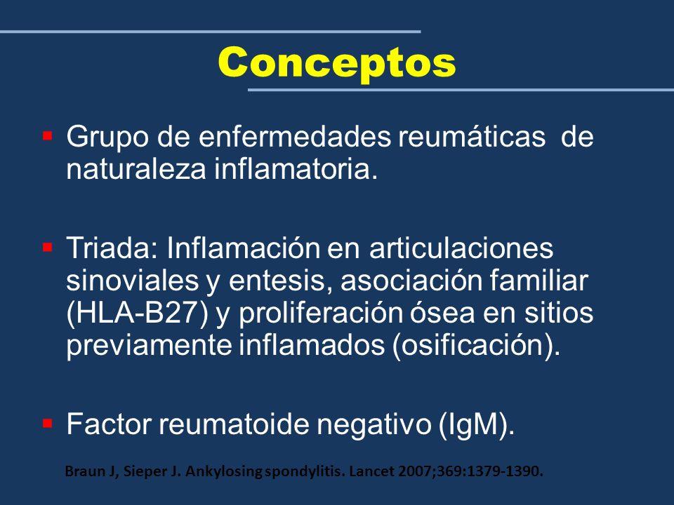 Conceptos Grupo de enfermedades reumáticas de naturaleza inflamatoria. Triada: Inflamación en articulaciones sinoviales y entesis, asociación familiar