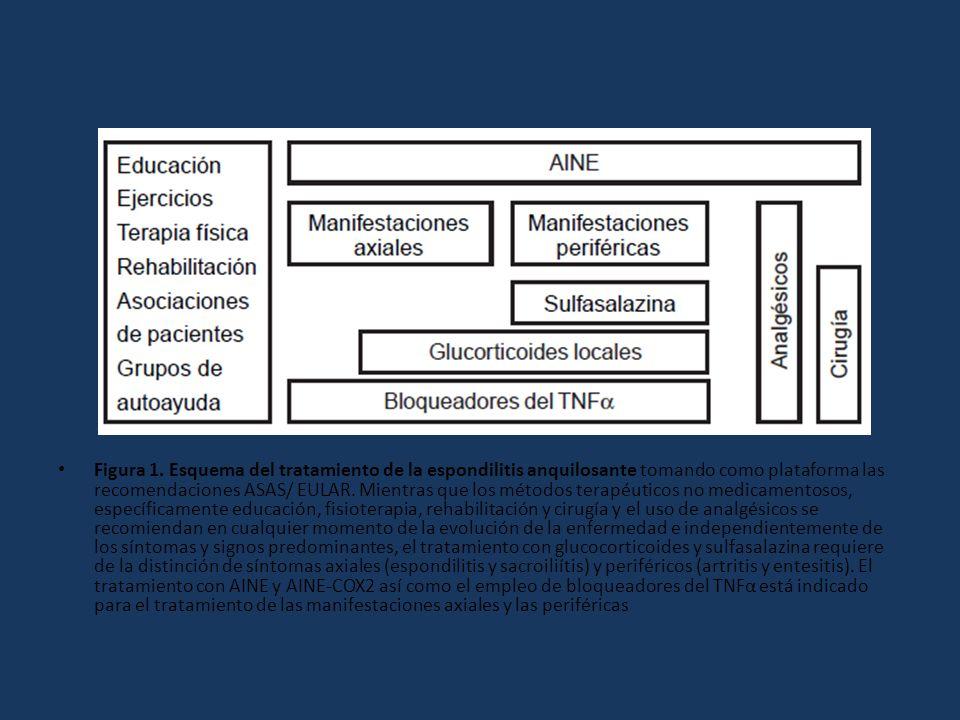 Figura 1. Esquema del tratamiento de la espondilitis anquilosante tomando como plataforma las recomendaciones ASAS/ EULAR. Mientras que los métodos te