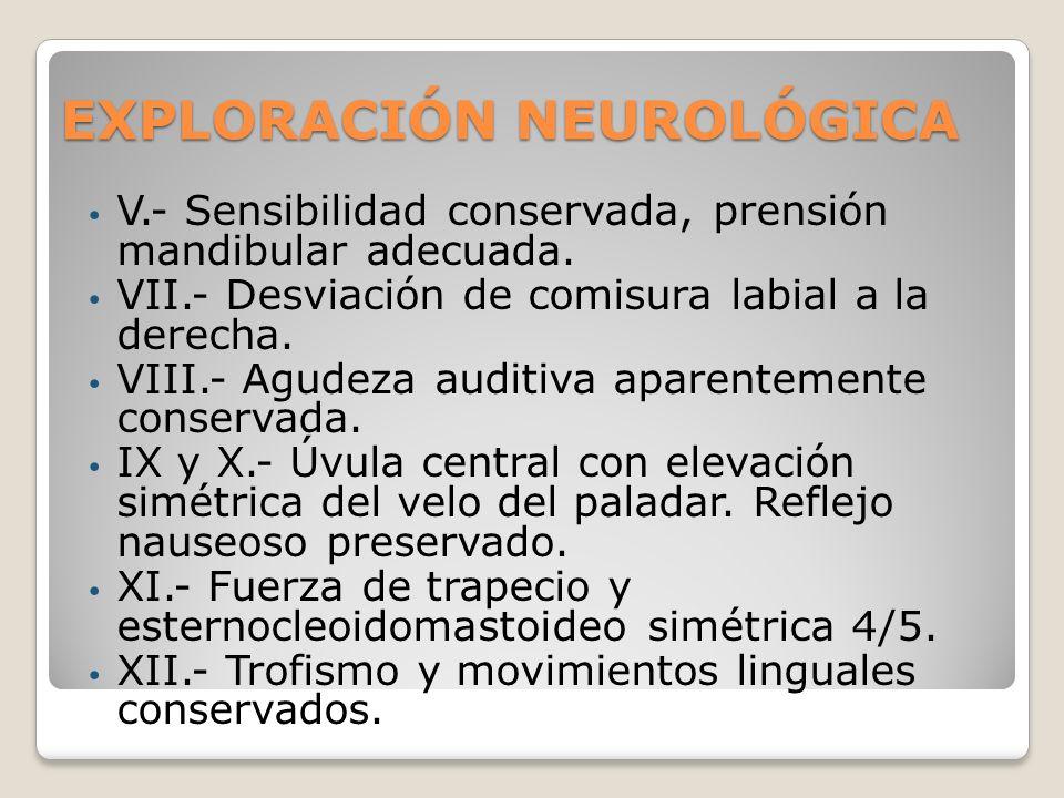 EXPLORACIÓN NEUROLÓGICA V.- Sensibilidad conservada, prensión mandibular adecuada. VII.- Desviación de comisura labial a la derecha. VIII.- Agudeza au