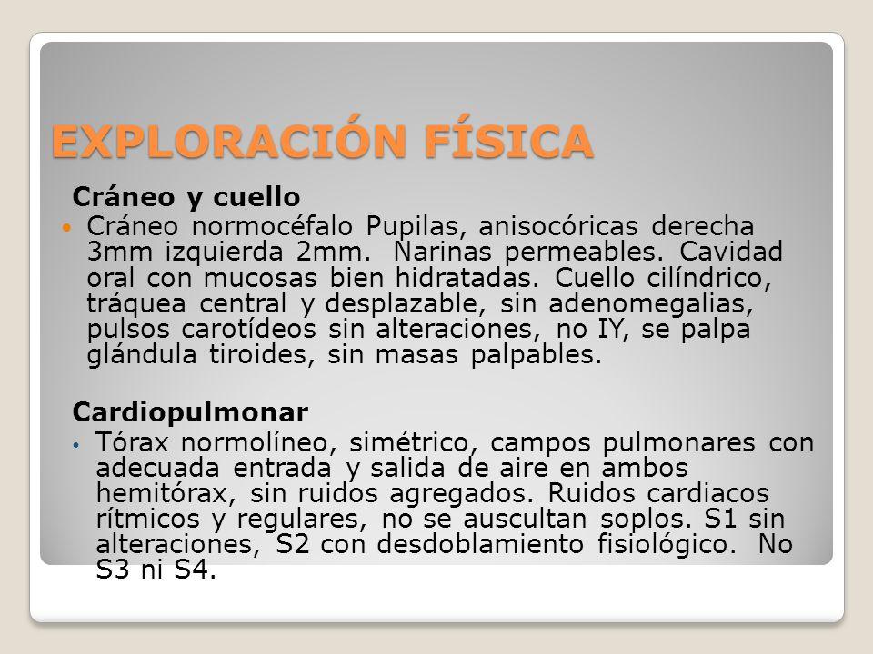 EXPLORACIÓN FÍSICA Cráneo y cuello Cráneo normocéfalo Pupilas, anisocóricas derecha 3mm izquierda 2mm. Narinas permeables. Cavidad oral con mucosas bi