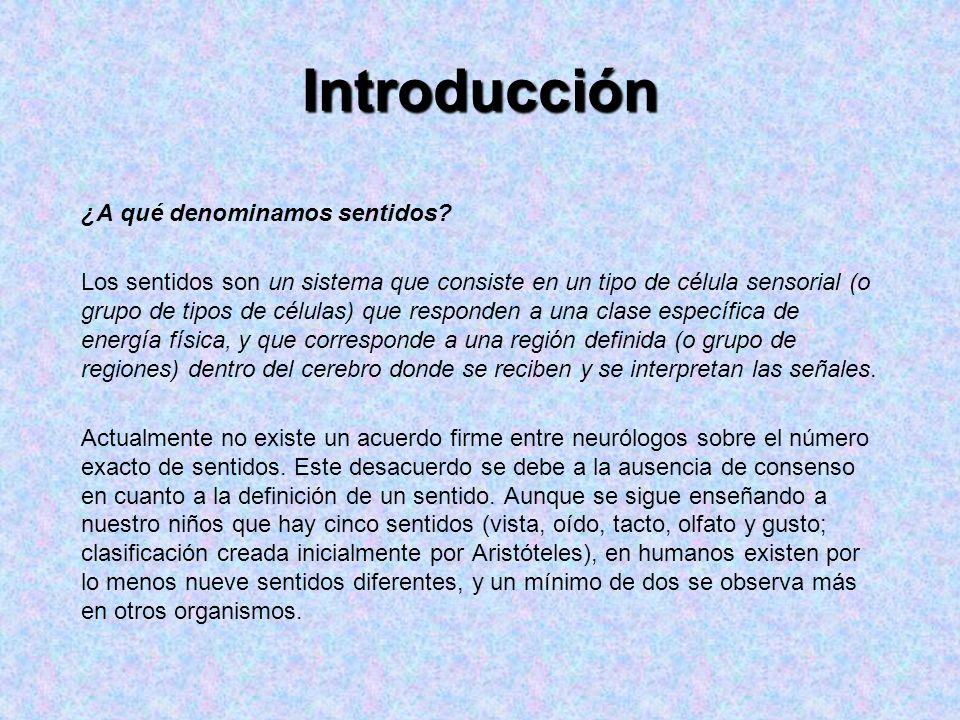 Introducción ¿A qué denominamos sentidos? Los sentidos son un sistema que consiste en un tipo de célula sensorial (o grupo de tipos de células) que re