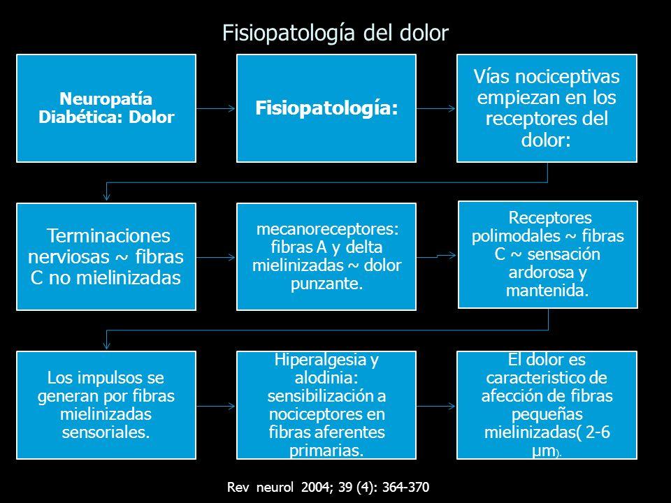 Fisiopatología del dolor Neuropatía Diabética: Dolor Fisiopatología: Vías nociceptivas empiezan en los receptores del dolor: Terminaciones nerviosas ~