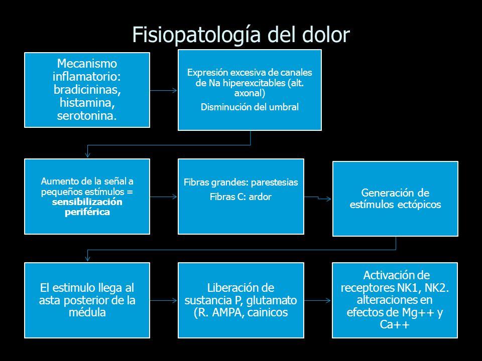 Fisiopatología del dolor Mecanismo inflamatorio: bradicininas, histamina, serotonina. Expresión excesiva de canales de Na hiperexcitables (alt. axonal