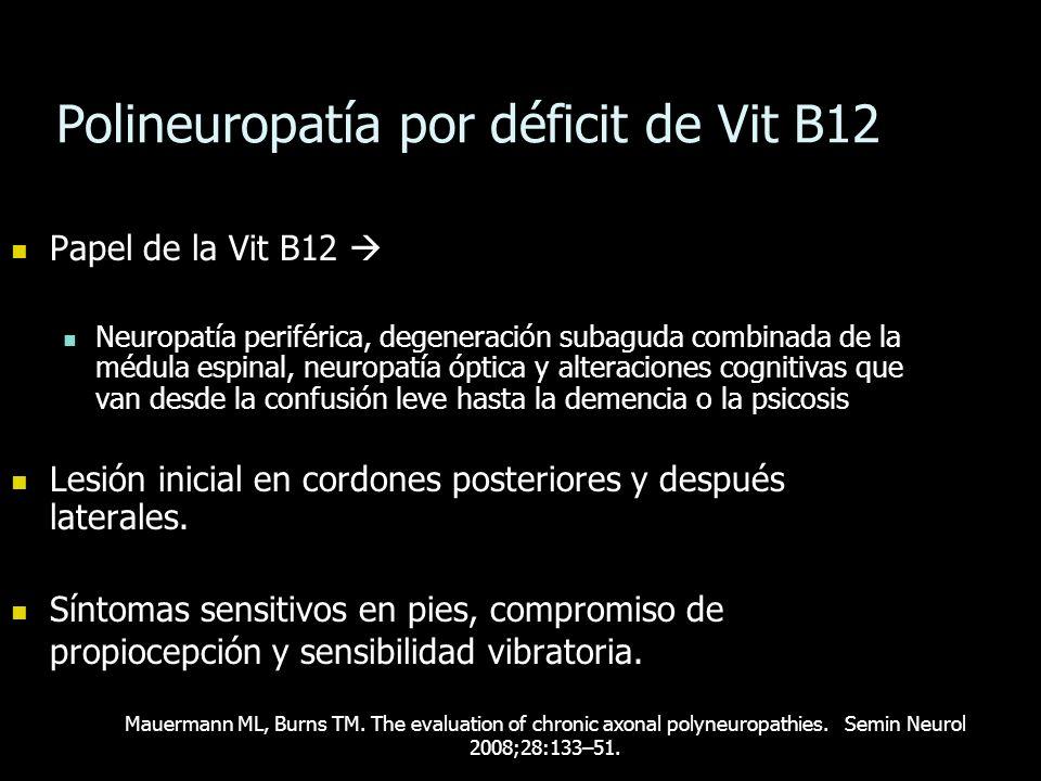 Polineuropatía por déficit de Vit B12 Papel de la Vit B12 Papel de la Vit B12 Neuropatía periférica, degeneración subaguda combinada de la médula espi