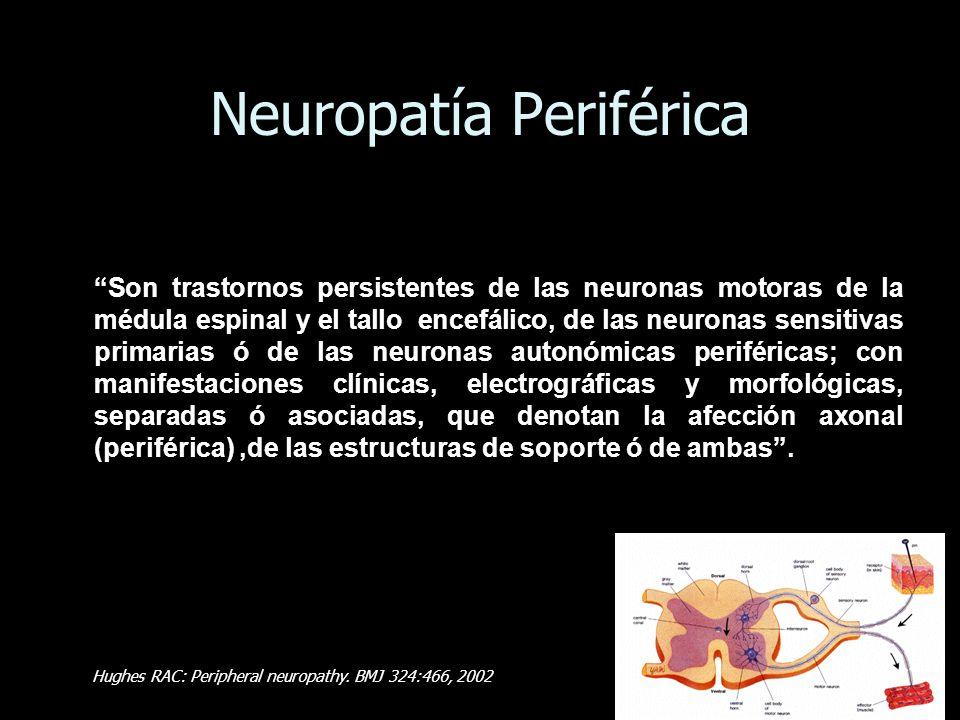 Neuropatía Periférica Son trastornos persistentes de las neuronas motoras de la médula espinal y el tallo encefálico, de las neuronas sensitivas prima