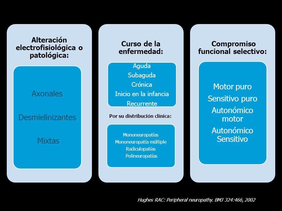 Clasificación Según Lesión Patológica Neuronopatía AxonopatíaMielinopatía Harati Y (ed): Neurologic Clinics.