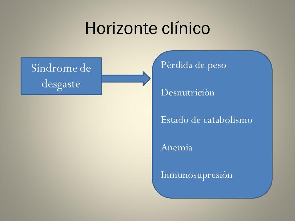Horizonte clínico Síndrome de desgaste Pérdida de peso Desnutrición Estado de catabolismo Anemia Inmunosupresión